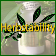 herb stability nutrition affiliate website creation services