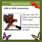 video to dvd photo slide shows